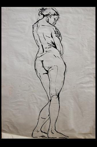 illustration: nu17 planche: nus