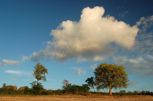 photo: nuage planche: campagne