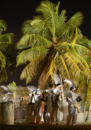 photo: deguise planche: cocotier